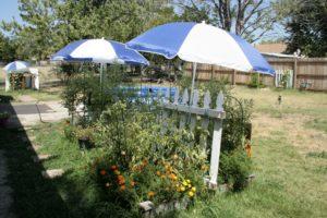 umbrella garden shade