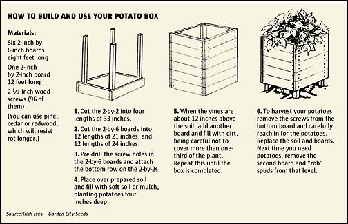 how to build a potato box