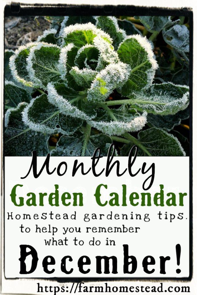 garden calendar for december