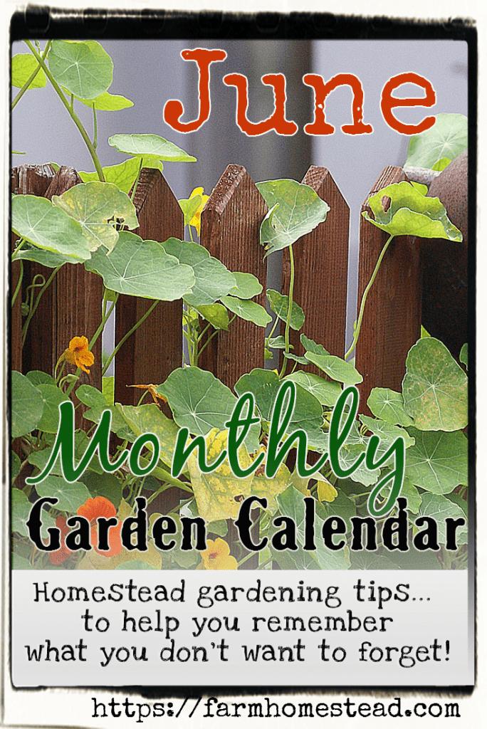 june monthly gardening calendar