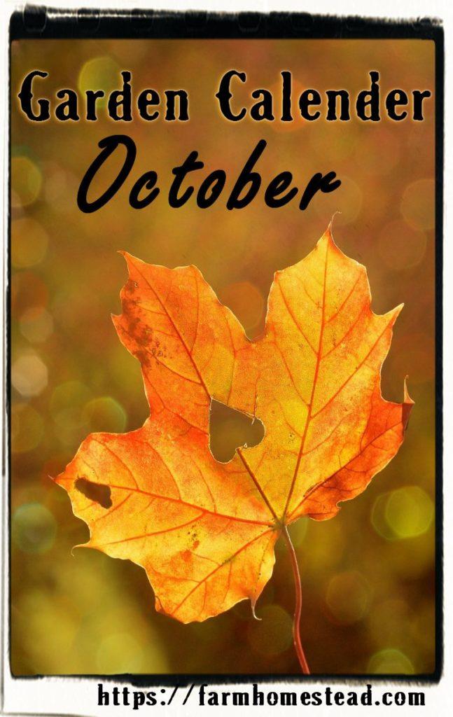 october garden calendar