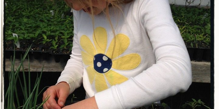 Garden Projects for Children
