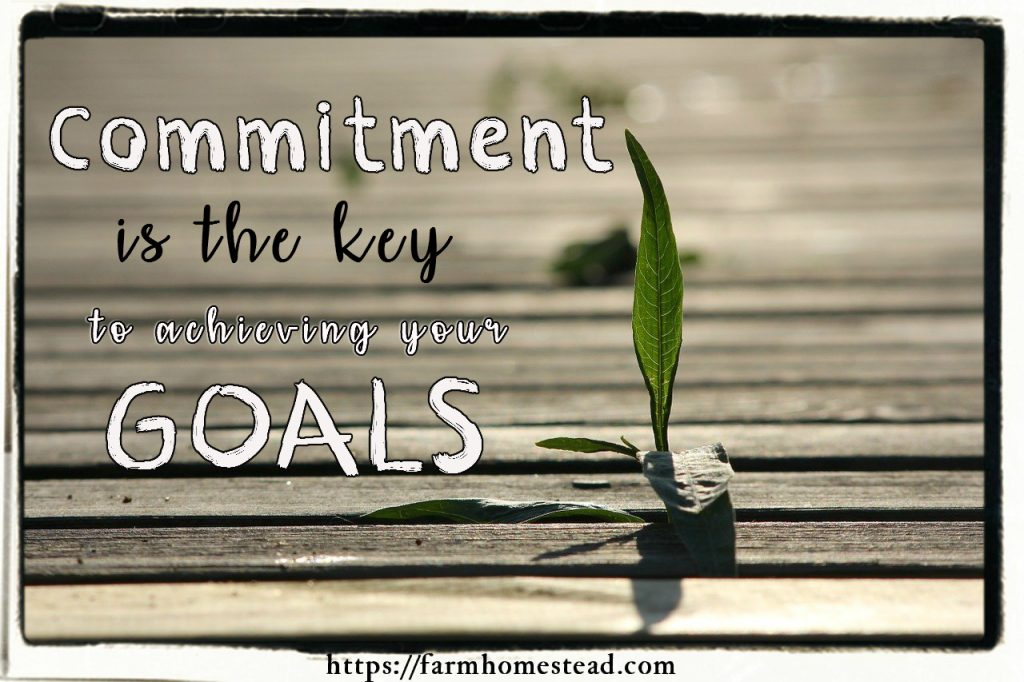 commitment is the key to achieving your goals