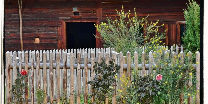 Ten Ways to Have the BEST Small Farm