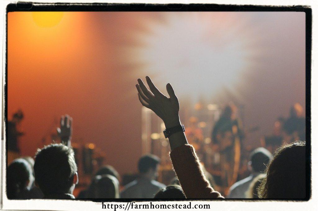 concert crowd violence