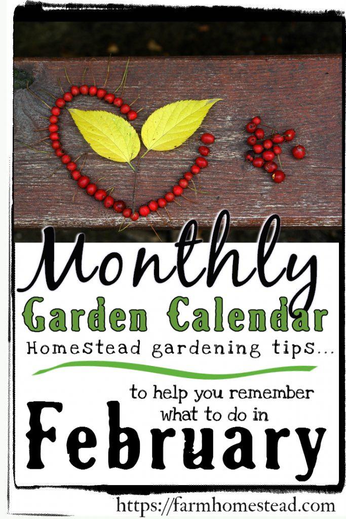 February Gardening Calendar