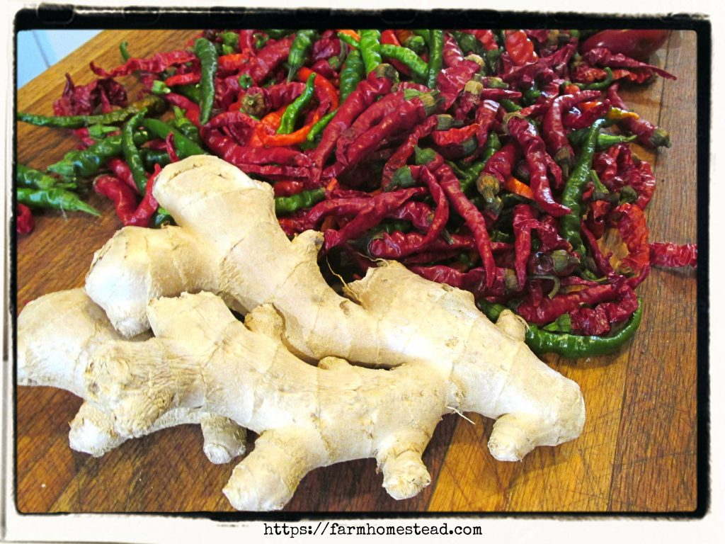 ginger and cayenne peppers - ingredients for fire cider