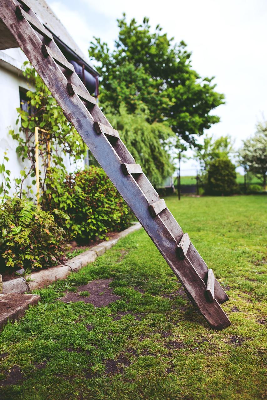 climbing the green wooden ladder