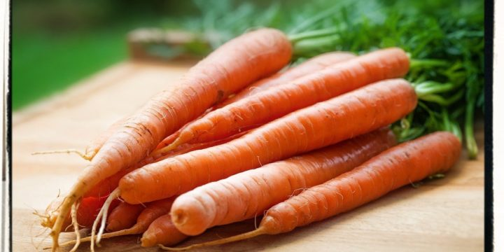 Growing Carrots and Food Security