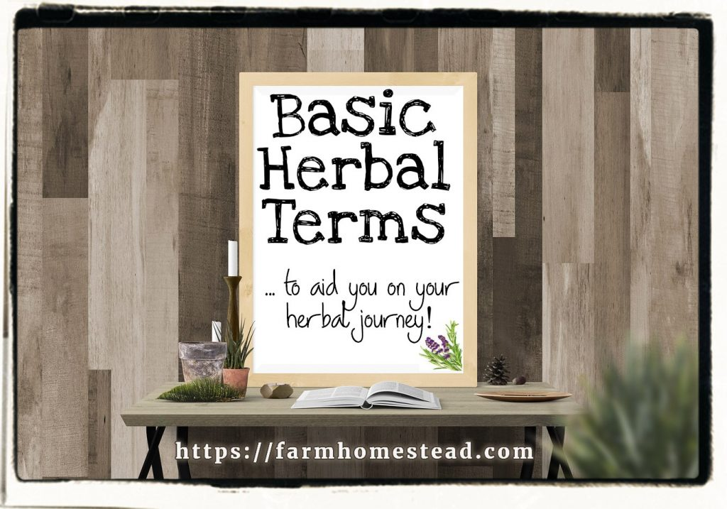 basic herb glossary of herbal terms