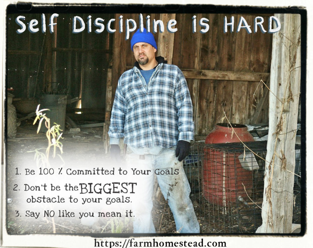 homesteading-self-discipline-is-hard.jpg