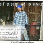 3 Easy Ways To Master Homesteading Self-Discipline