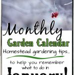 Garden Calendar for January