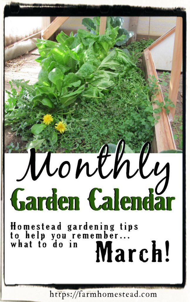 march gardening calendar