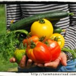 Sustainable Organic Gardening