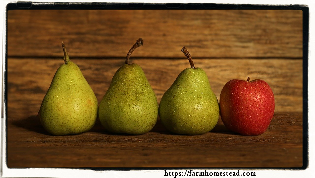 pears and an apple