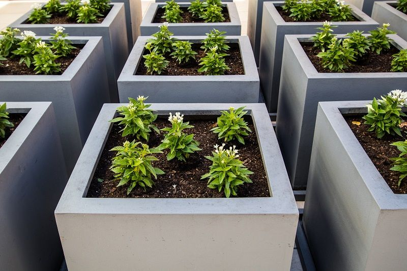 cement planter boxes