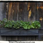 Advantages of Using Plastic Planter Boxes For Your Domestic Or Commercial Beautification