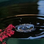 Rainwater is a Valuable Resource
