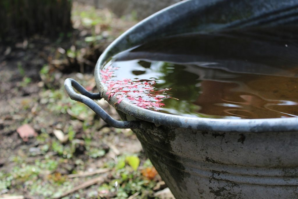 rainwater a valuable resource