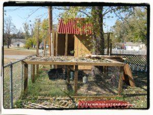 chicken coop roof Going UP!