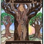Nancy Broadley-Rooted In Nature