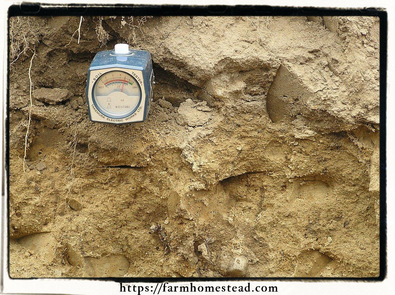 soil pH tool