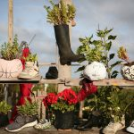 Winter Gardening in Containers