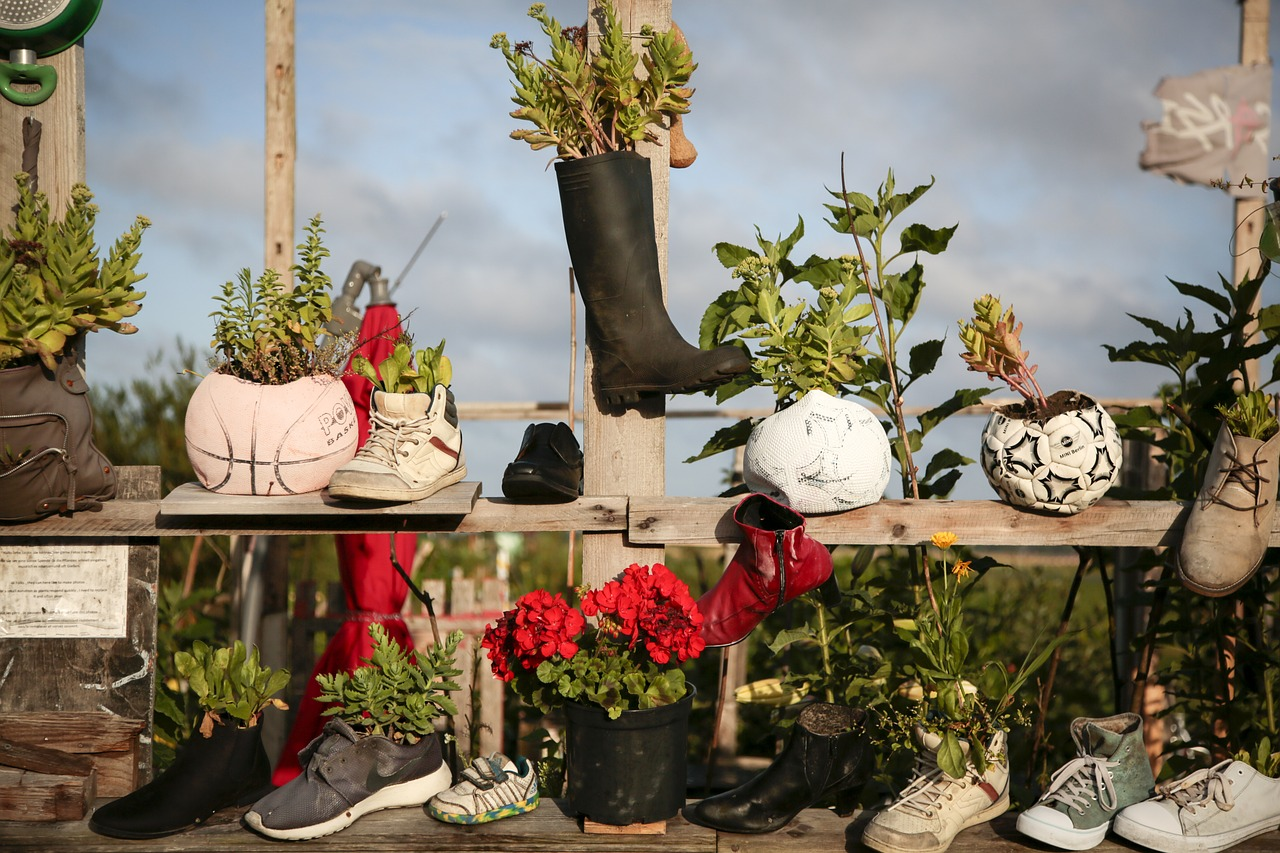 unusual containers for winter gardening
