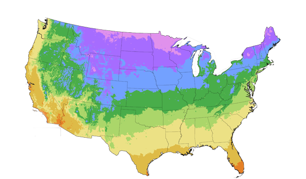US First and Last Frost Dates