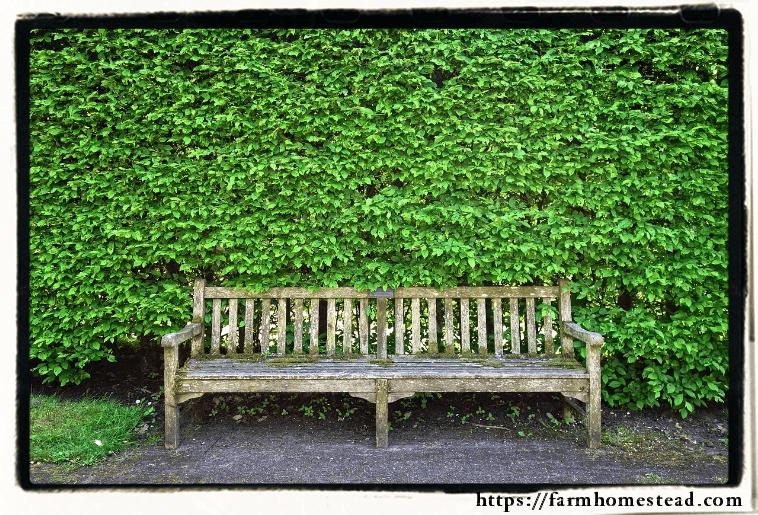 wooden bench for cozy backyard getaway